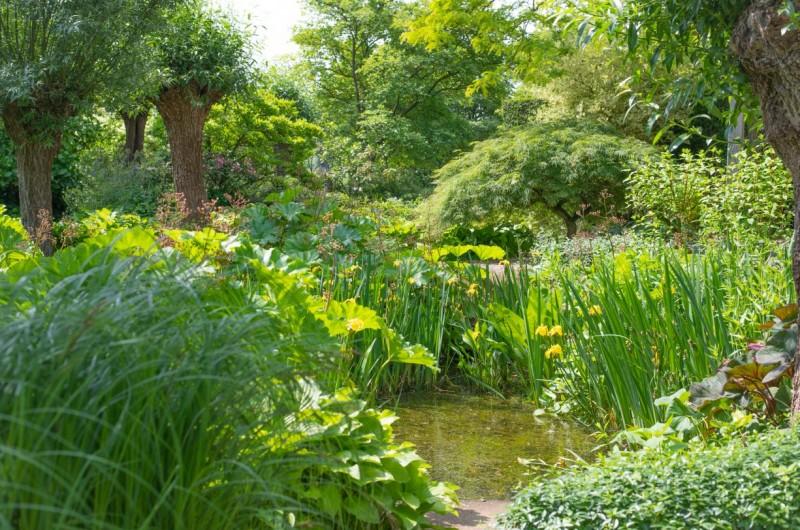 Natuurlijke tuinen met water