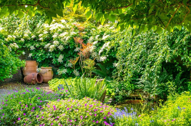 Verscholen groene weelderige tuinen