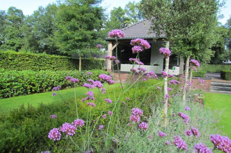 Moderne kleurlijke tuinen