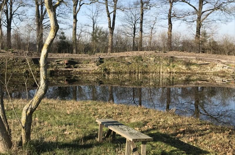 Onderhoud en renovatie natuurlijke tuin voorjaar 2019