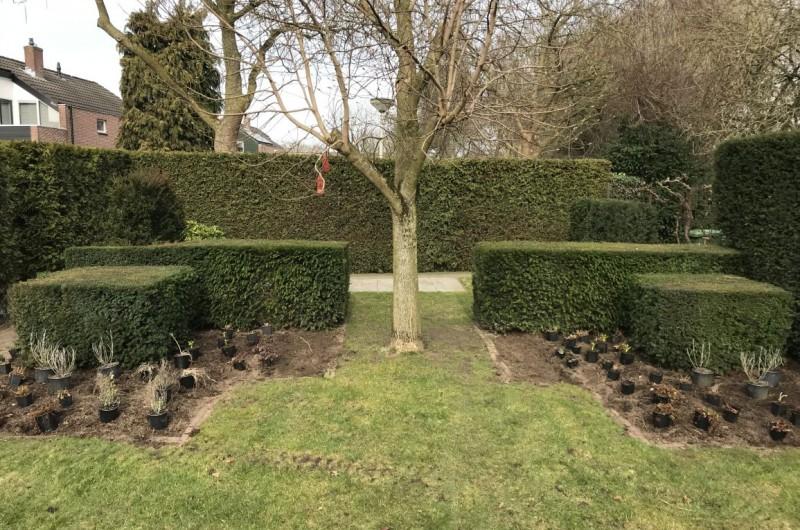 Aanleg tuin lopend project februari 2019