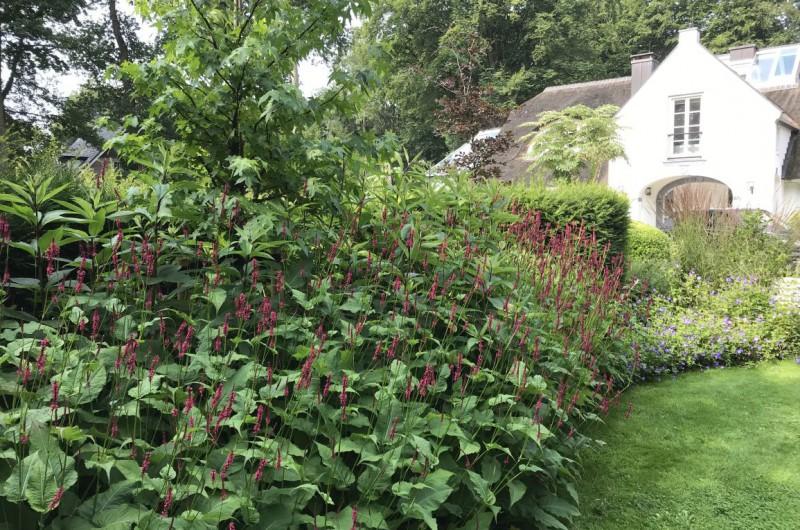 Villa tuinen met wilde bloeiende borders en bosachtige uitstraling